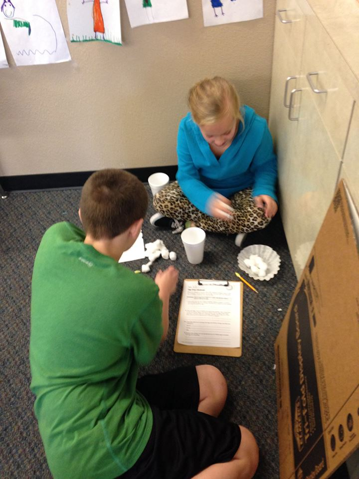 Pledgecents Cause Alternative Seating Items For My